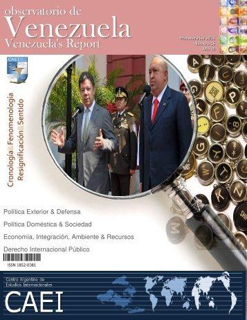 Observatorio de Venezuela - Primavera Sur 2011 - CAEI