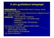 5._sziv pdf