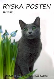 2-2011 - Russian Blue Klubben