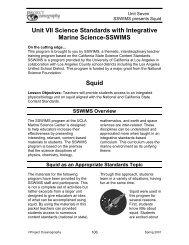 Squid - College of Marine Science