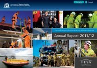 Download Full Report - Department of Fire and Emergency Services