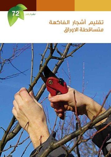 تقليم أشجار الفاكهة متساقطة الأوراق
