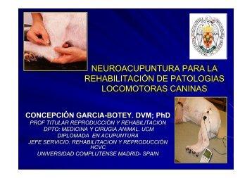 neuroacupuntura para la rehabilitación de patologias ... - SIAV