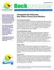 Chesapeake Bay Watershed Blue Ribbon Finance Panel Members