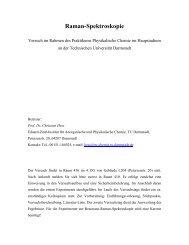 Raman-Spektroskopie - Technische Universität Darmstadt