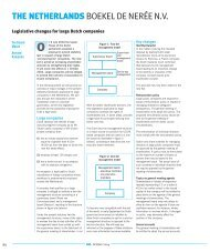Legislative changes for large Dutch companies - Boekel De Nerée