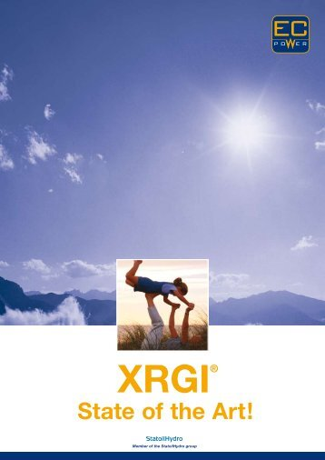 XRGI State of the Art - Fes-bhkw.de