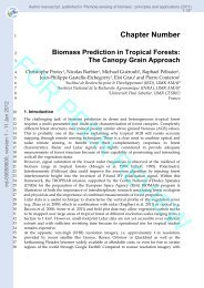 Biomass prediction in tropical forests: the canopy grain approach