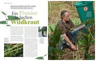 Artikel lesen - Wildkräuter Werkstatt