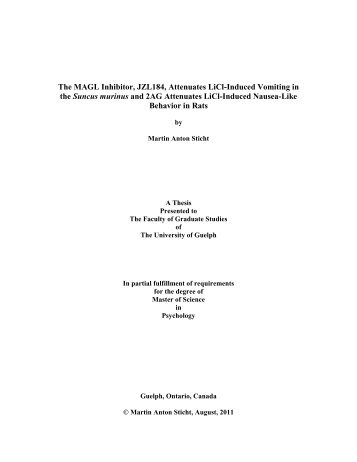 Where to buy master thesis