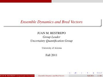 Ensemble Dynamics and Bred Vectors - SAMSI