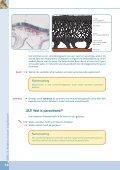 DEEL 3:Relaties tussen organismen - Plantyn - Page 4