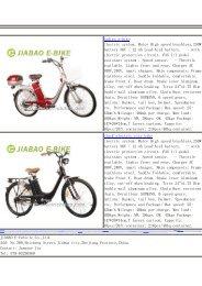 steel+plastic frame electric bikes
