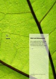 Waldbau & Klimawandel BE - Volkswirtschaftsdirektion - Kanton Bern