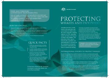 Protecting Whales and Dolphins fact sheet - Department of the ...