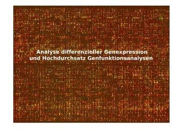 Genexpression 2012.pdf - Chirurgie