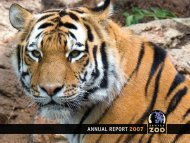 ANNUAL REPORT 2007 - Denver Zoo