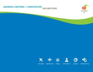 GEORGIA CENTERS of INNOVATION INCUBATORS