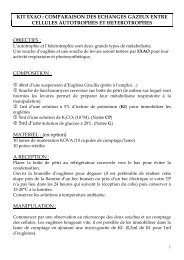 KIT EXAO : COMPARAISON DES ECHANGES GAZEUX ... - sordalab