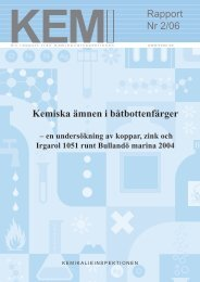 KemI Rapport 2/06 - Kemikalieinspektionen
