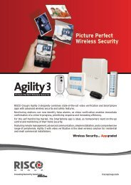 Picture Perfect Wireless Security - isn systems