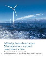 Schleswig-Holstein könnte seinen Wind exportieren - Zukunft Lübeck