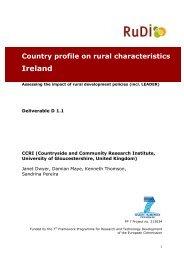 Country profile on rural characteristics Ireland - RuDI