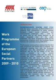 Work Programme of the European Social Partners 2009 ... - UEAPME