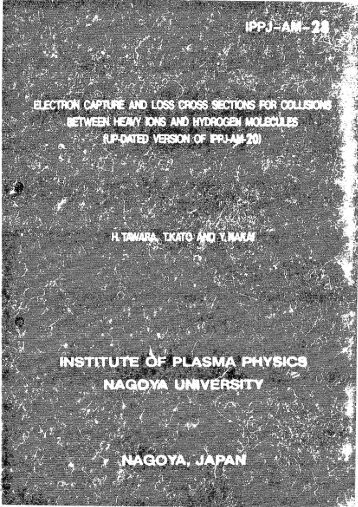 IPPJ-AM-28(PDF 6650KB)