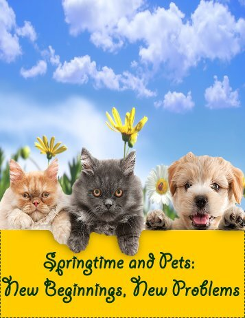 Springtime and Pets: New Beginnings, New Problems