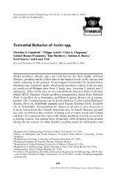 Terrestrial Behavior of Ateles spp. - Colin Chapman