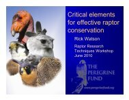 Critical elements for effective raptor conservation - The Peregrine Fund