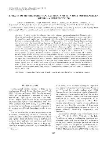 effects of hurricanes ivan, katrina, and rita on a ... - BioOne