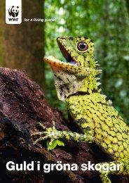 Guld i gröna skogar - Världsnaturfonden WWF