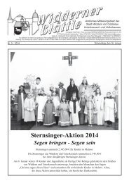 Sternsinger-Aktion 2014 - Stadt Widdern