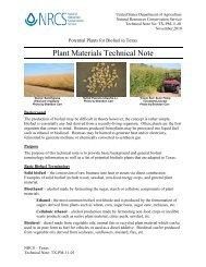 Biofuels Potential Plants for Texas - Plant Materials Program - US ...
