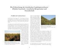 Die Erforschung der israelischen Lepidopterenfauna - Zoologische ...