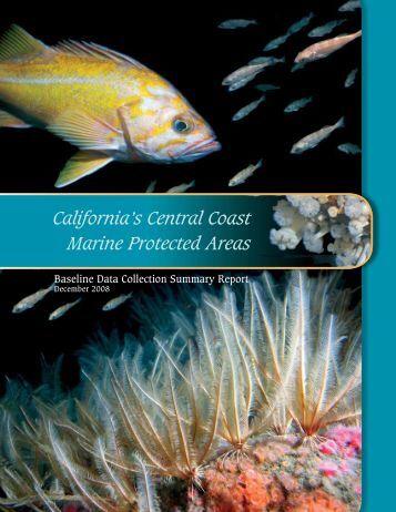 California's Central Coast Marine Protected Areas - California Sea ...