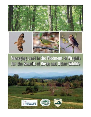 Managing Land in the Piedmont of Virginia for the Benefit of Birds ...