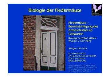 Biologie der Fledermäuse und potenzielle Quartiere für ...