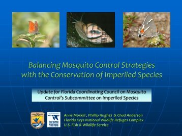 Balancing Mosquito Control Strategies with the Conservation of ...