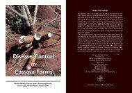 Disease Control in Cassava Farms Disease Control in ... - IITA