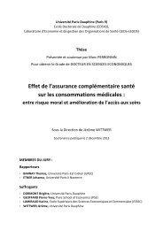 these-perronnin-marc-effet-de-l-assurance-complementaire-sante-sur-les-consommations-medicales