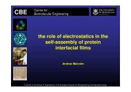 the role of electrostatics in the self-assembly of protein interfacial films