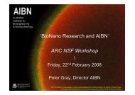 AIBN and the Future of Nanotechnology Research