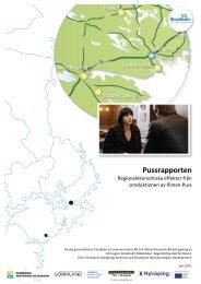 Ladda ner rapporten - Regionförbundet Sörmland