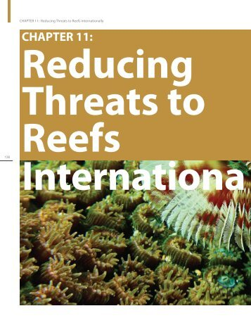 Chapter 11: Reducing Threats to Reefs Internationally - NOAA Coral ...