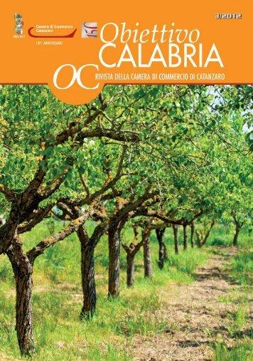 numero 3 anno 2012 - CCIAA di Catanzaro - Camera di Commercio