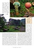 Neu: Kolumbien Pilzartikel - Mushroaming - Seite 5