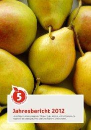 Jahresbericht 2012 - 5 am Tag
